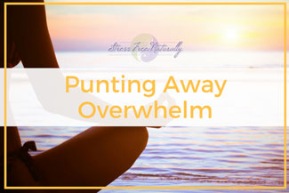 06 Punting Away Overwhelm