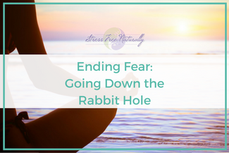 21 Ending Fear – Going Down the Rabbit Hole