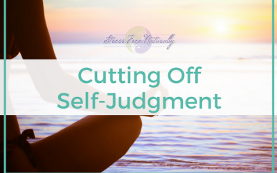 3: Cutting Off Self Judgement