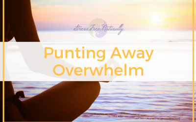 6: Punting Away Overwhelm