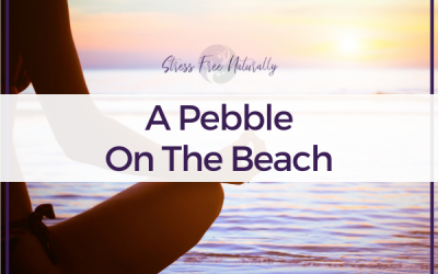 62 – A Pebble on the Beach